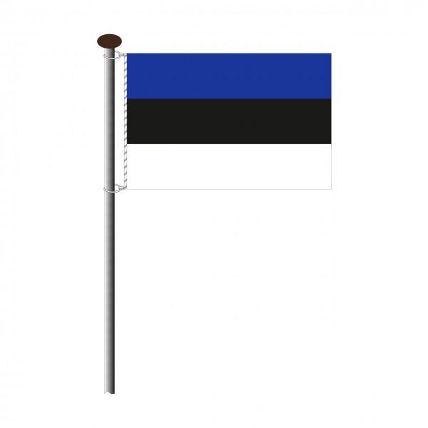 Fahne Estland im Querformat